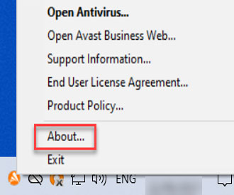 Avast CloudCare Check Version select About
